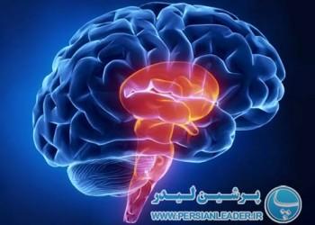 دکتر محسن فلاح